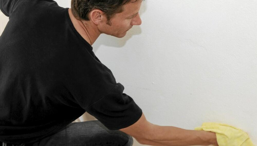 RENGJØRING: Det hevdes at vi bruker alt for mye rengjørings- og vaskemidler i hverdagen.