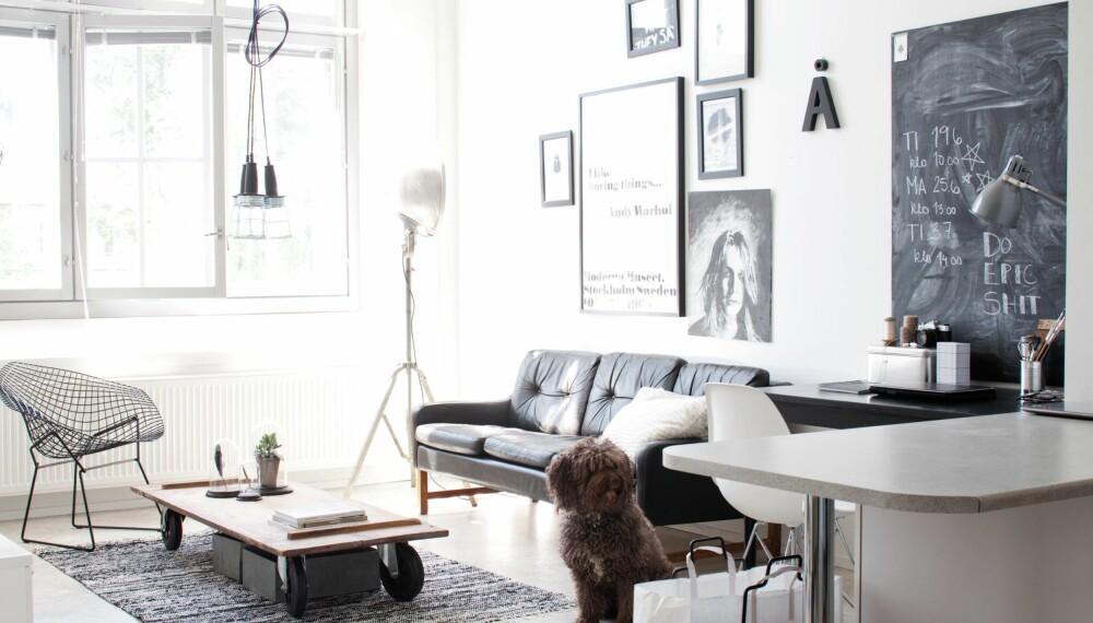 SMARTE OG RIMELIGE LØSNINGER: Sofaen i stuen er et loppefunn. Taklampen har Netta satt sammen av tre lamper. Lignende får du hos Granit. Sofabordet er hjemmelaget. Hjul får du blant annet kjøpt hos bolina.no og Clas Ohlson. FOTO: KATJA LÖSÖNEN