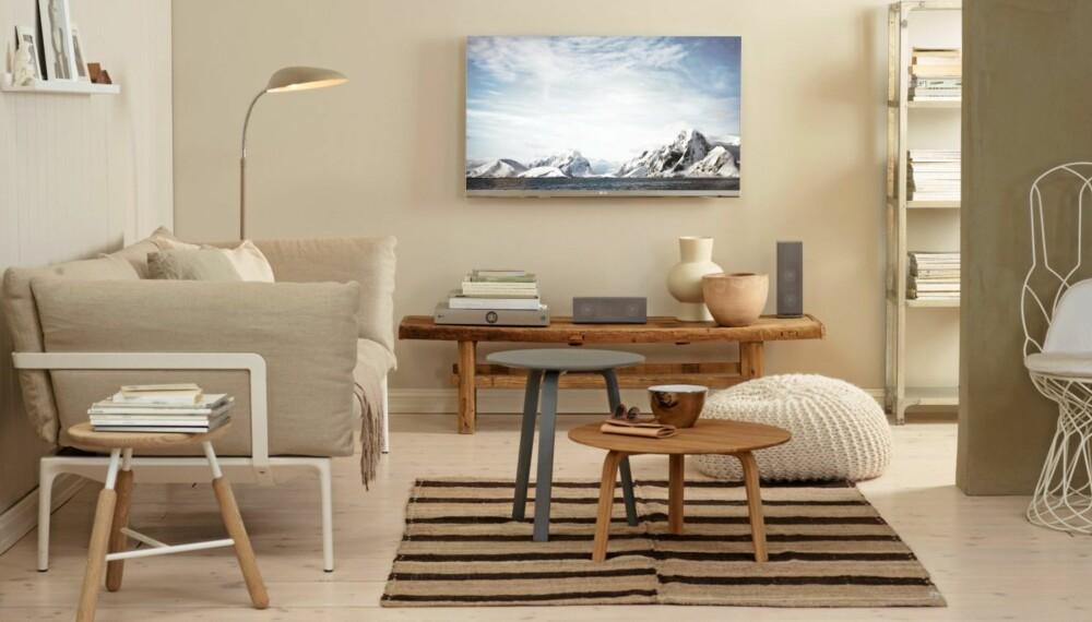 Fasjonable Rydd plass til tv-en - Stue QQ-65