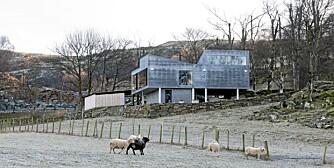 KONTRAST - OG SAMTIDIG SAMSPILL: Det nye huset står på tomten til et gammelt grisefjøs og ligger karakteristisk til under de høye trærne. Huset står delvis på påler og er kledd utvendig med tøffe fibersementplater.