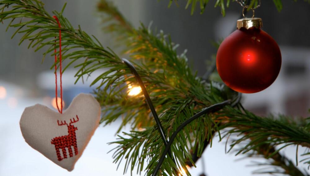 Topp Slik unngår du at juletreet drysser - Bolig SH-29