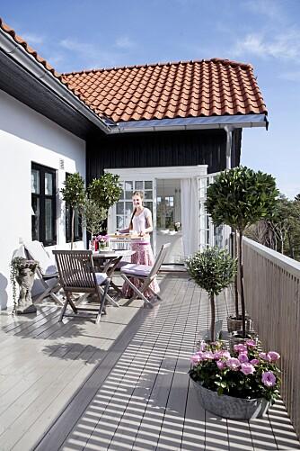 TERRASSEN: Marias terrasse bader i sol. I forkant ser du en balje med roser kjøpt på Kastanjen, og et stort laurbærtre og et lite oliventre fra Kremmerhuset.