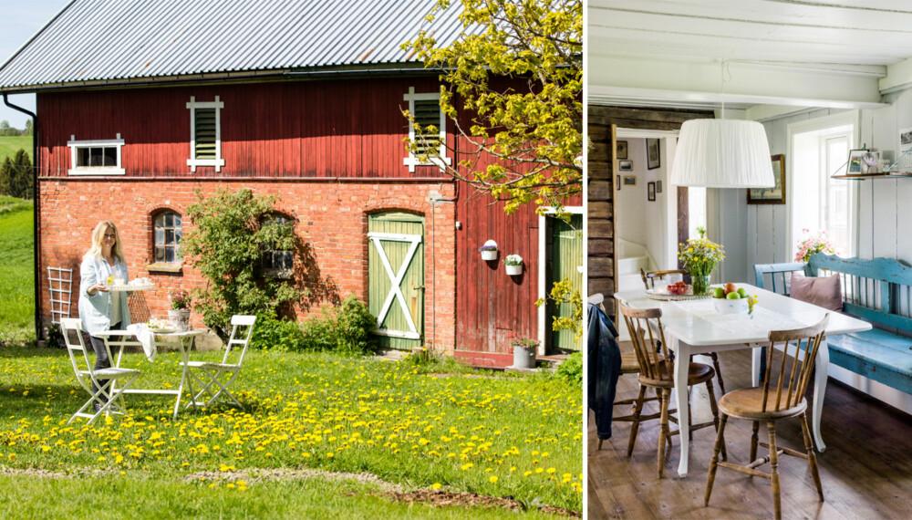 LANDLIG INTERIØR: Familien har skapt mange koselige rom i den store hagen. Her kan de bare flytte seg rundt etter sola.