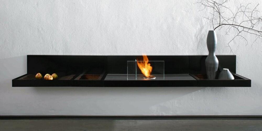 BIO: «Loungefire» er en elegant løsning som går på bioetanol.