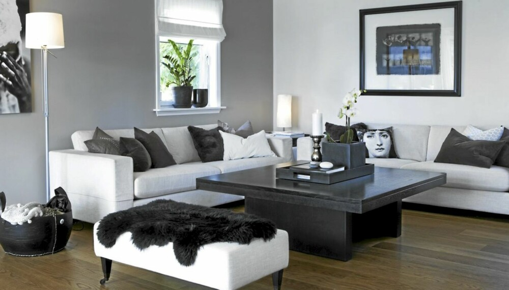 MALTE FONDVEGG: Fotograf Margaret M. de Lange har malt endeveggen i stuen sin grå. Hun har brukt fargen S3005-Y50R.