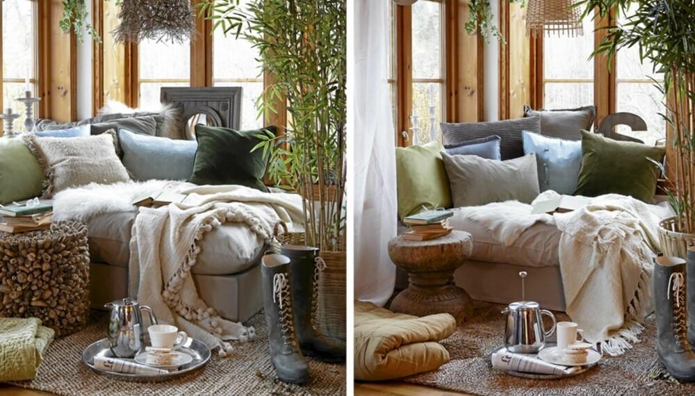 DYRT OG BILLIG: Klarer du å gjette hvilken som er den dyre vinterhagen og hvilken som er den billige?