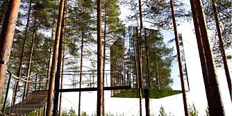 I TRETOPPEN: Dette hotellet i Sverige passer kanskje ikke om du lider av høydeskrekk.