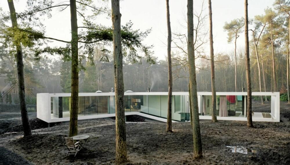 ET VAKKERT SMYKKE: Her ser du hvordan den hollandske Villa 1 strekker de lange fløyene, eller fingrene sine utover i skogen. Den mange ganger prisbelønte boligen er tegnet av arkitekt Nanne de Ru og hans Powerhouse Company.