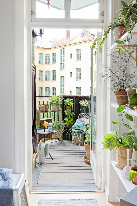 ET EKSTRA ROM: Leiligheten blir et rom større om sommeren. Hyllen på kjøkkenet trekker det grønne inn og gjør at inne og ute glir mer over i hverandre. FOTO: Jorunn Tharaldsen