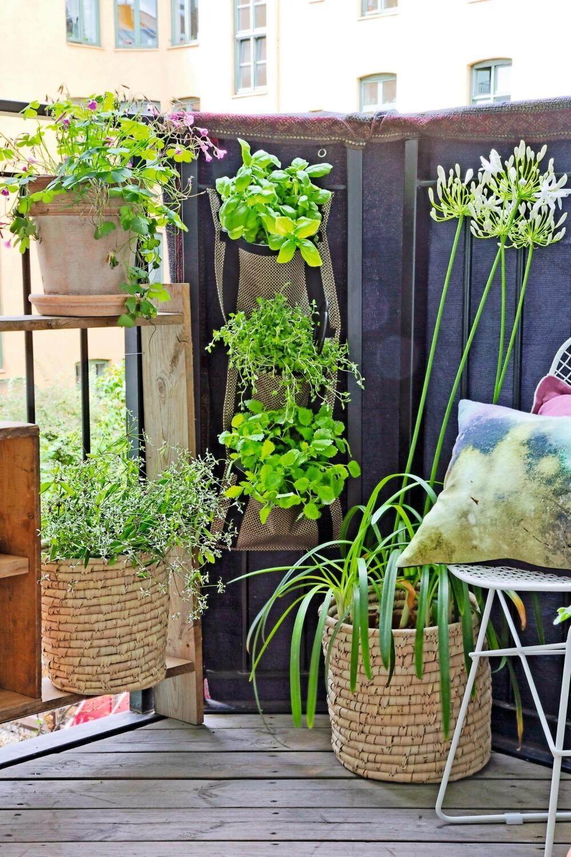 I HØYDEN: Plasser plantene i høyden, det gir et lunt og frodig preg. Det samme gjør et pledd hengt over kanten på rekkverket. Fest det med ståltråd både oppe og nede, eventuelt kan du bruke en voksduk eller et impregnert stoff. Kurvpottene er fra Bloomingville og den batikkmønstrete puten fra House Doctor. Begge får du hos Zanz. FOTO: Jorunn Tharaldsen
