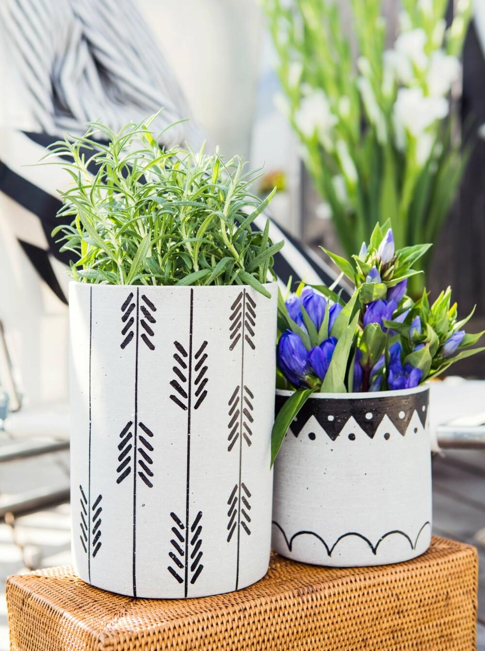 DIY: Kjøp enkle blomsterpotter, disse er fra Kremmerhuset, og dekorer dem med ditt eget mønster. Vi brukte Sharpie Paint pens, penner med oljebasert malingsfarge, som er lette å tegne fine detaljer med. Fås blant annet på amazon.com. FOTO: Nadia Norskott