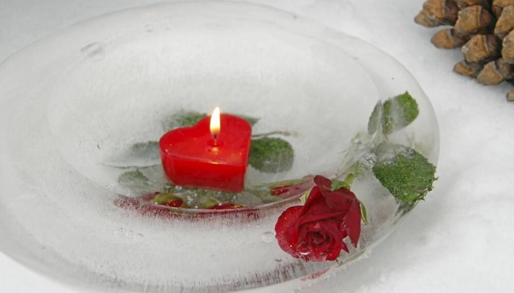 KALD BLOMSTERPRAKT. Roser tåler kulde og er flotte  i islykten. Denne har en lav kant, men den kan du regulere selv når du fyller på vann.