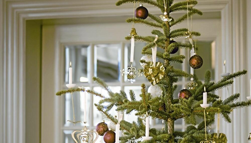 JULETREFJERNING: Noen har allerede kastet ut juletreet, mens andre venter helt til 20. dag. Hvor lenge venter du?