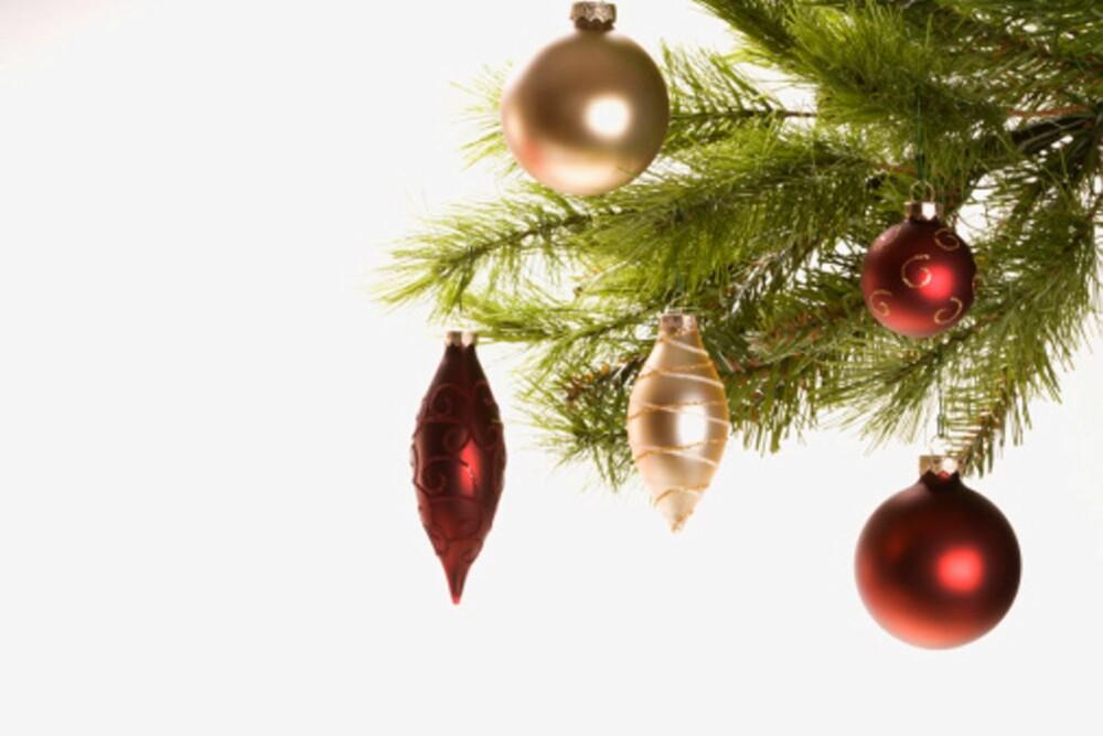 DU GRØNNE GLITRENDE TRE GOD DAG: I dette pyntede juletreet gjemmer det seg rundt 15 000 små kryp.