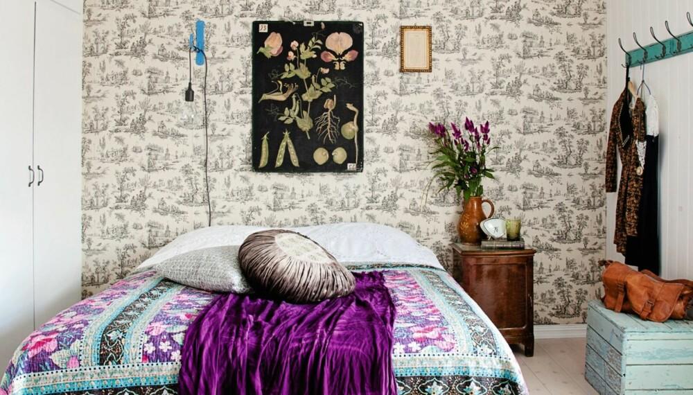 ET ROM FOR DRØMMER: Soverommet er delikat innredet med både brukte og nye tekstiler og puter, gamle møbler og et vakkert tapet. Tilsammen danner det en spennende stilmiks. Gammel botanikkplansje og møbler fra loppemarked, og lysekronen er fra et marked i Pisa.