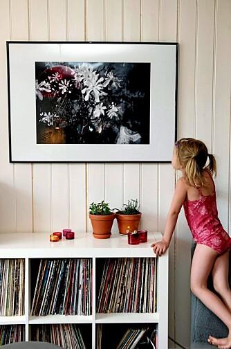 SOMMERMINNE: Minnene fra årets sommer kan få evig liv på stueveggen hjemme, men prosessen kan by på utfordringer. Se opp for bilder i for lav oppløsning og støv som fester seg på innsiden av ramma.