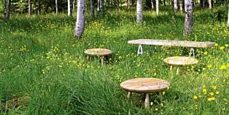Disse piknikbordene kan se ut som en krakk. Men ikke la deg lure.