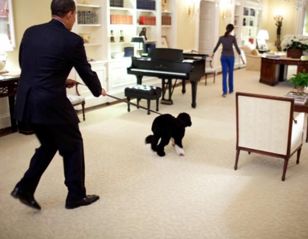 BO: Familien Obama har også gjort plass til hunden Bo i Det Hvite Hus.