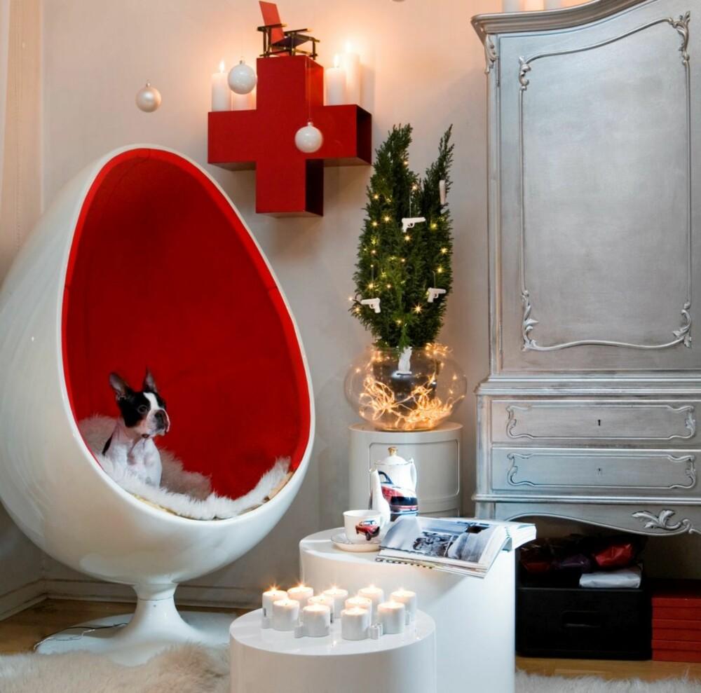RØDT OG HVITT: Plastbusken er pyntet med små julelys fra Nille, og hvite porselenspistoler og biler fra Eske. Hunden Valdemar sitter i stolen fra Eske. Bordene er fra Living. Korset på veggen er en CD-hylle fra Eske. De hvite kulene i taket er fra Åhléns og er festet med dobbeltsidig teip. Skapet er kjøpt på Sinsen Brukthall og malt med sølvfarge.