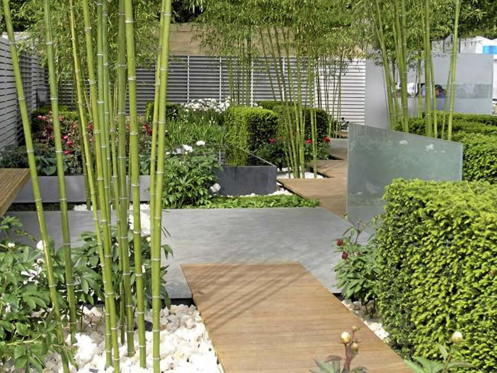 bambus garden the bamboo garden can one take your breath away room bamboo garden nest maker. Black Bedroom Furniture Sets. Home Design Ideas