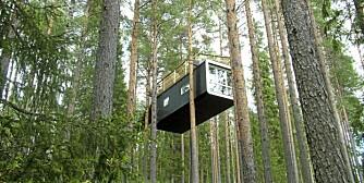 THE CABINE: Av arkitektene Cyrén & Cyrén. The Cabine minner litt om en ukonvensjonell kapsel eller hytte.