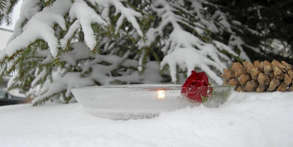 ROSEIDYLL. Sett islykten ut i hagen, den er flott i snøen og skaper stemning.