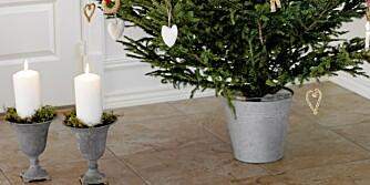 JULETREFOT: Med denne juletrefoten bør treet stå stødig.