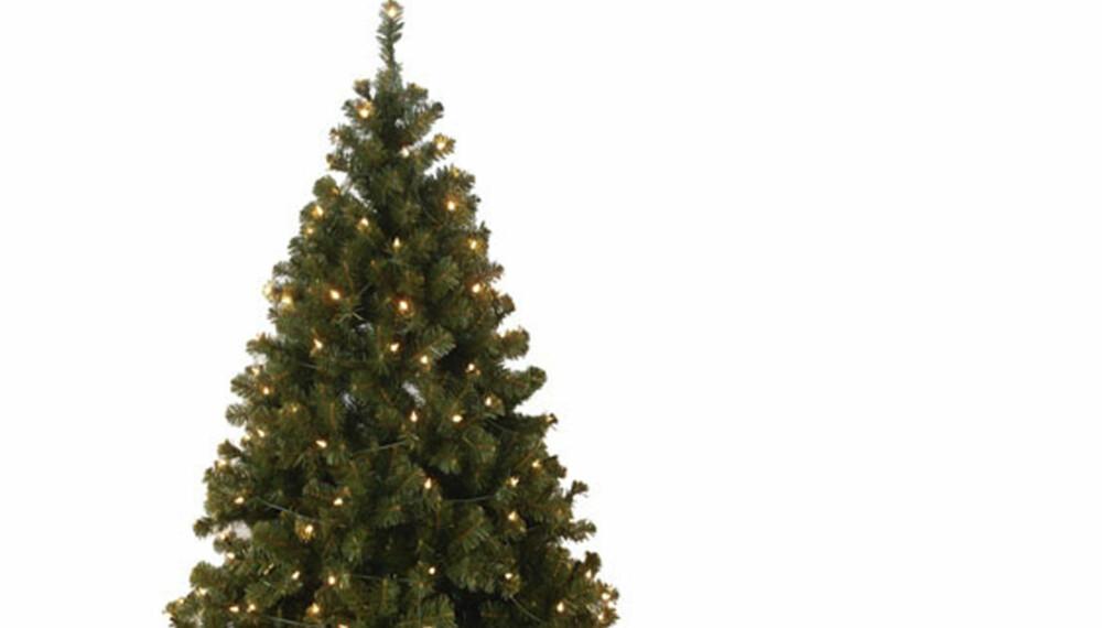 Hyggelig Disse juletrærne drysser ikke - Bolig AS-63