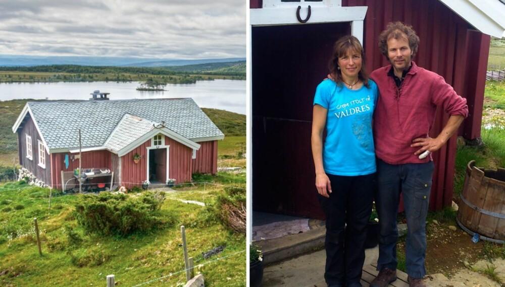 FJELLPLATÅ: Olestølen ligger 1000 meter over havet ved Olevatn i Øystre Slidre kommune. Den er en av mange tidligere støler, men er i dag den eneste som er i drift i dette stølslaget. Her er familien Aslaksby selvforsynt hele sommeren.