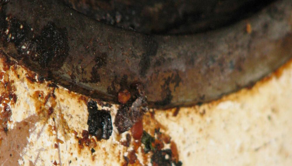 """LUKTER VONDT: Ser komfyren din slik ut, lukter det mest sannsynlig gamle matrester på kjøkkenet ditt. Slik blir du kvitt den vonde lukten. FOTO: : <a href=""""http://www.flickr.com/photos/ragesoss/429921300/sizes/l/in/photostream/"""">ragesoss</a> på Flicker.com. Noen <a href=""""http://creativecommons.org/licenses/by/2.0/deed.en_GB"""">rettigheter</a> reservert."""