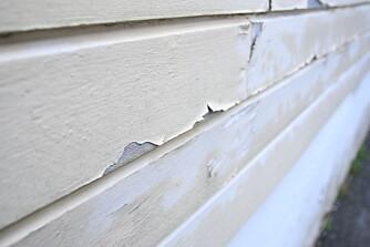 FLASSER AV: Tjukk malingsfilm på fuktig vegg kan gjøre at malingen flasser av. Hvor ofte du må male kommer an på hvilket produkt du bruker, men med vannbasert maling kan du kunne vente opp i 16 år før du maler på nytt.