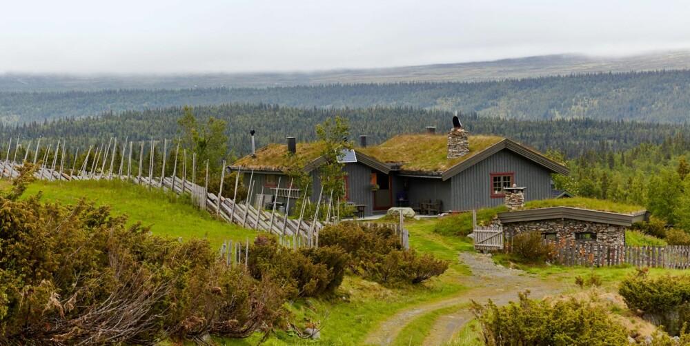 DRIFT: I dag er det drift på kun én seter i området, Hornsjøsetra, som driver med melkedrift og sau.