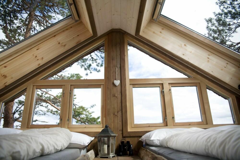GLASSTAK: Sovehemsen er utstyrt med glasstak og glassflater som gir utsikt til stjernehimmel og naturen utenfor.