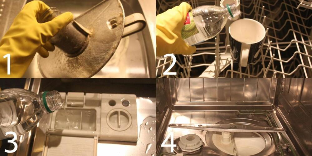 EKKEL: Oppvaskmaskinen var full av gammelt skitt, men hadde stått ubrukt lenge. Eddiken fungerte likevel utmerket, og maskinen var skinnende ren etter behandling.