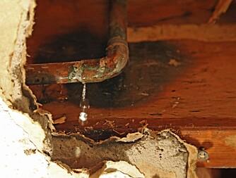 DEKKES IKKE: Dryppende rør som forårsaker skader dekkes ikke alltid av forsikringen, særlig dersom det er snakk om rust eller tæring. (FOTO: ThinkStock)