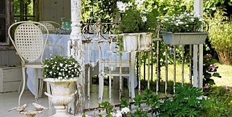 SOMMERROMANTIKK: Dekorerer du uteplassen i hvitt skaper du romantiske omgivelser. Ved hjelp av blomster og planter blir selv den kjedeligste uteplass til en oase.