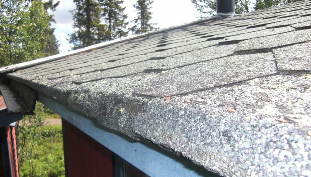 BYTT TAK: Ser du sprekkdannelser i overflaten eller spiker som kommer opp, kan det være tegn på at du må legge taket på nytt. (FOTO: Sverre Julsrud Kristiansen)