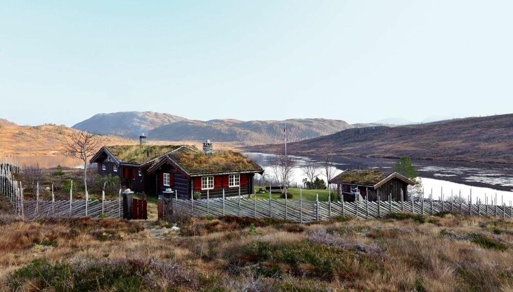 MED UTSIKT OVER VANNET: Fra en lavmælt høyde er  det en formidabel utsikt over Måsvatnet på Rødfjell.
