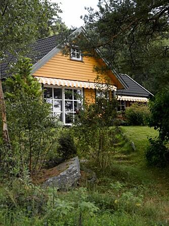 Familiehytta ligger lunt og vakkert til ved Oslofjorden.