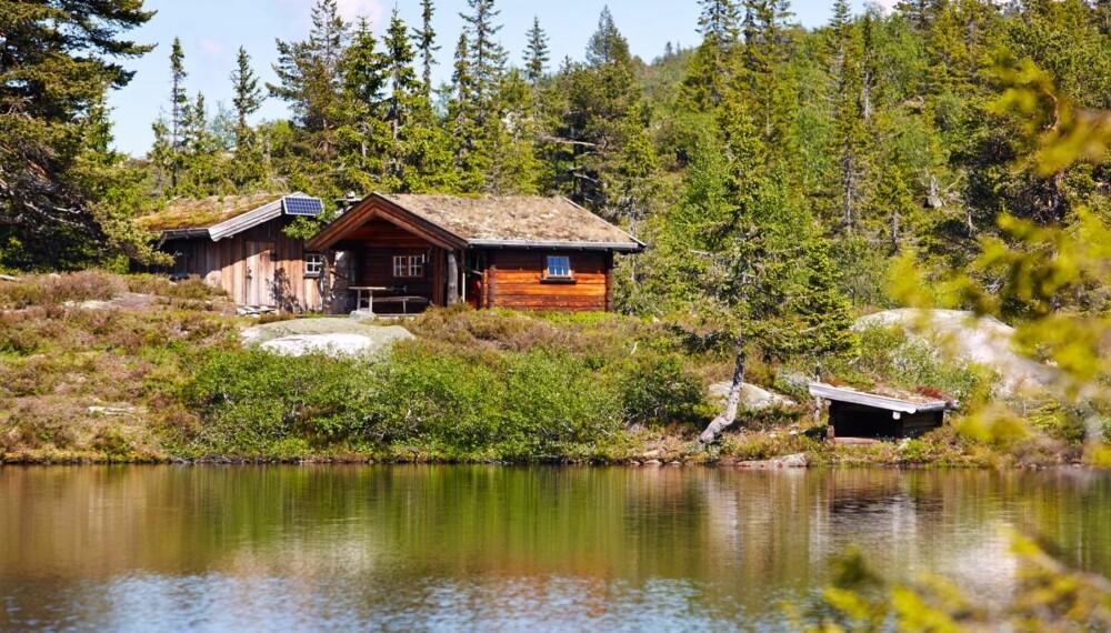 Vinnerhytta: Gunhild Momraks hytte i Fyresdal i Telemark vant konkurransen Norges drømmehytte i 2013. Byggeår 1994. Størrelse 15 m² og uthus på 12 m². Fasiliteter: Solceller og biodo. Fjellvann fra bekken.