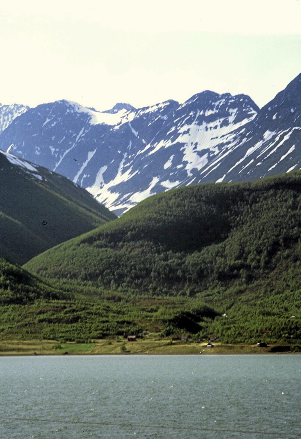 USYNLIG PÅ AVSTAND: Fra den andre siden av fjorden ser du Roggeloukta-hytta bare som en liten prikk i terrenget.