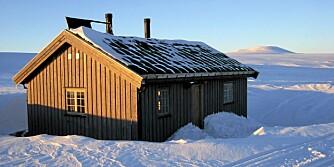 LEDIG: Ut i naturen i Øvre Numedal, sør-øst for en høyde som på kartet har navnet Ribbehæ ligger denne hytta klar til leie i vinterferien. To soverom, ni sengeplasser. Pris 800 kroner per døgn hos Inatur.no. Pristillegg på 300 kroner for ved for en uke.