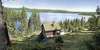 TIL SALGS: Hytte på Øyangen, Ringkollen. Primærrom 20 kvm, pluss hems. Byggeår: Opprinnelig et stabbur som er flyttet til tomten på 50-tallet. Tomt 2 452 kvm. Prisantydning 1 480 000 kroner.