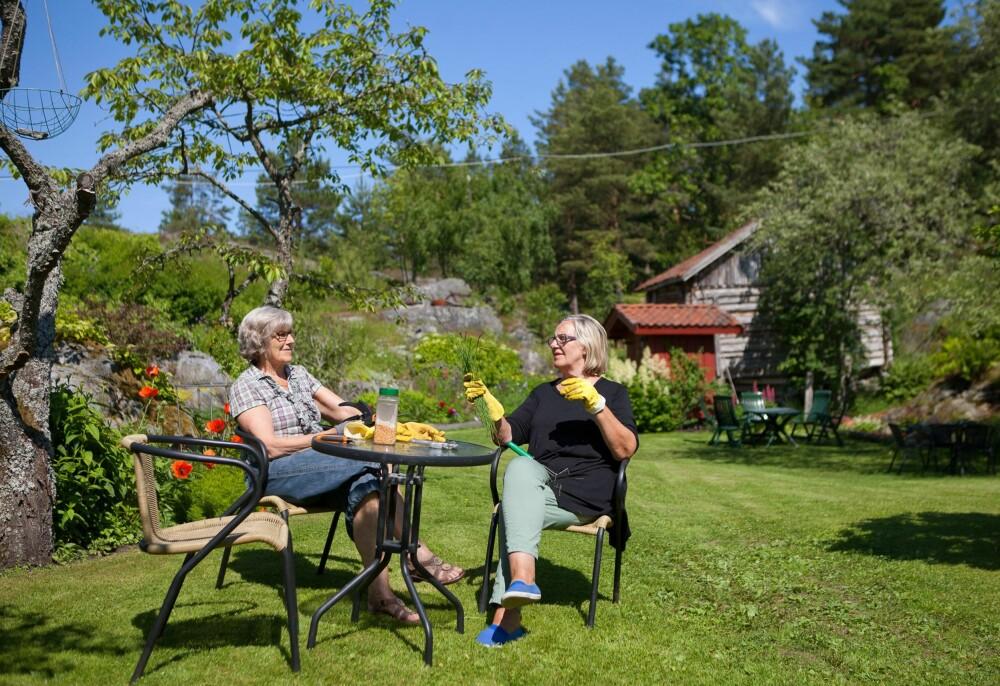TAR VARE PÅ HAGEN: Søstrene Rigmor og Jorun tar en pust i bakken. De har omsorg for den store eiendommen, tenker på farger, sesonger, planter som vokser i høyden og planter som kryper.