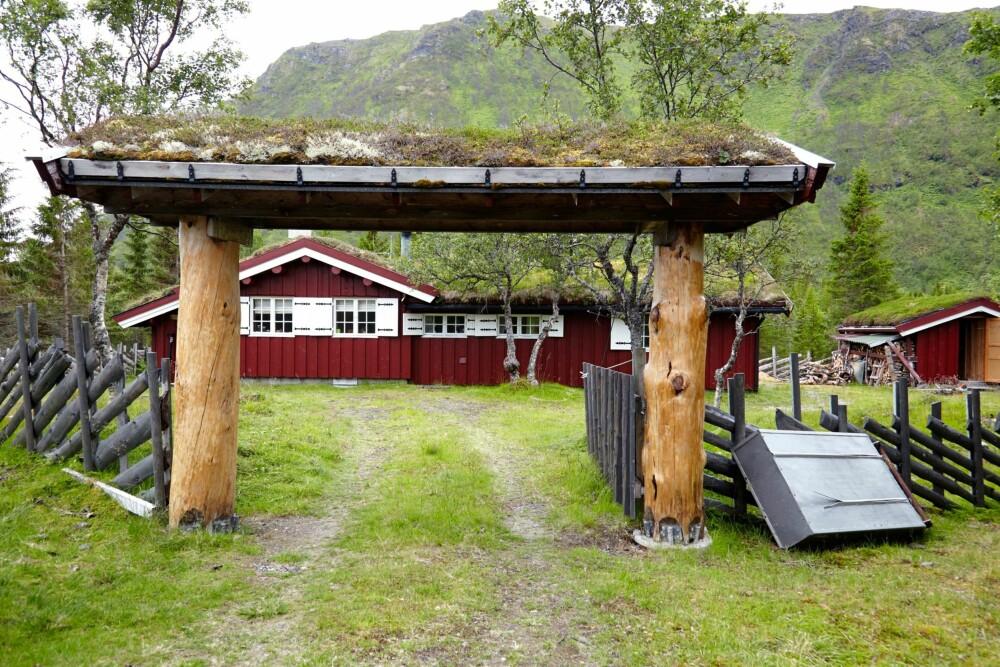 HENTET FREM: Hytta var så gjengrodd at hyttefolket i nærheten nesten hadde glemt av den. Porten er laget av tykke furustokker fra indre Troms, som er pusset frem og lakket.