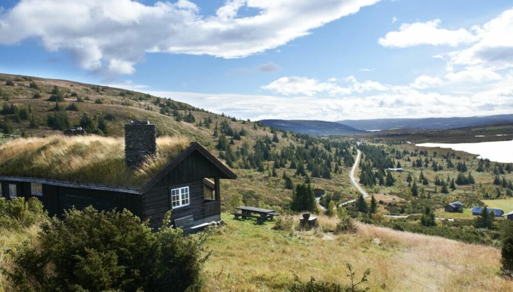 VILLE IKKE BYGGE NYTT: Da hytteeier Astrid Øyråker arvet tomta på stølsjordet ønsket hun ikke å bygge nytt.