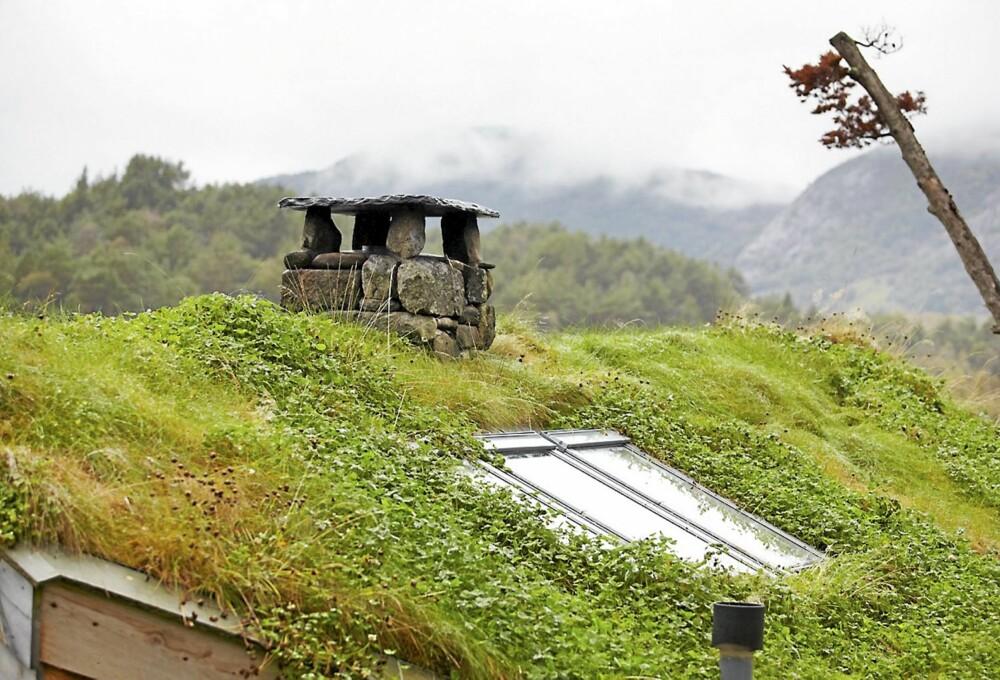 NATURLIG TAK: Torvaket har en tilsvarende sammensetning som naturen rundt. Det er også takvinduer på hver side som skal gi godt med dagslys inn i hytta.