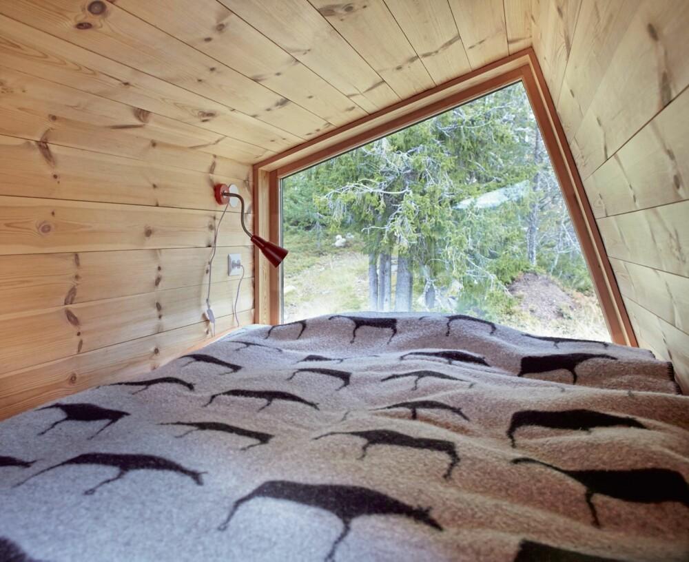 Tett på: Store vinduer gir nærkontakt med naturen. Det er nesten som å være på en utkikkspost.