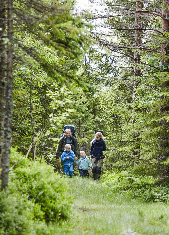 SOLID GÅTUR: Det tar ca. én time å gå til hytta for små barneføtter, men turen går greit. Det er så mye spennende å se på i skogen. (FOTO: Sveinung Bråthen)