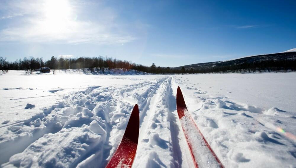 IKKE LABB AV STED UTEN Å SMØRE SKIENE: Ha riktig smurning som gir godt feste og god glid. Turen blir fort kjedelig hvis skiene blir isete eller bakglatte. Kladdete ski er heller ikke særlig stas ...